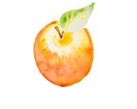 Illustration d'aquarelle d'une pomme Image stock