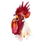 Illustration d'aquarelle de coq pour la carte de voeux chinoise de nouvelle année Photo stock
