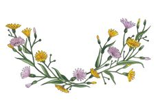 Illustration d'aquarelle de frontière jaune et lilas de wildflowers photos stock
