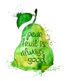 Illustration d'aquarelle de fruit de poire Photos libres de droits