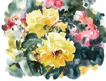 Illustration d'aquarelle de peinture de main de roses jaunes Photos libres de droits