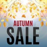 Illustration d'Autumn Leaves Sale Background Vector Image libre de droits