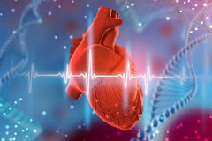 illustration 3d av den mänskliga hjärta och kardiogrammet på futuristisk blå bakgrund Digitala teknologier i medicin arkivfoton