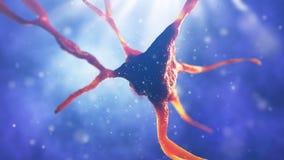 illustration 3d av den nerv- cellen Arkivfoton