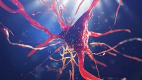 illustration 3d av den nerv- cellen Royaltyfri Bild