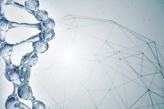 illustration 3d av DNAmolekylmodellen från vatten Arkivbilder