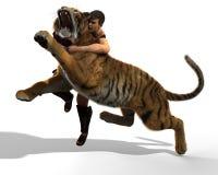 illustration 3D av en gladiatorstridighet med en tiger som isoleras på vit bakgrund Arkivfoto