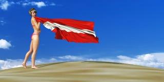 illustration 3d av flaggan stock illustrationer