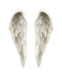 illustration 3d d'Angel Wings Isolated sur le fond blanc Images libres de droits