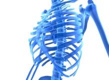 illustration 3D de système cadre bleu brillant Photos stock