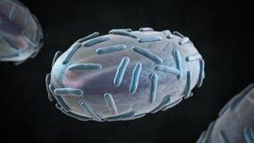 illustration 3D de virus de variole Image stock