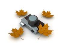 Illustration 3D der Retro- Weinlesefotokamera mit gelbem Herbst Stockfoto