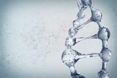 Illustration 3d des DNA-Molekülmodells vom Wasser Lizenzfreie Stockfotos
