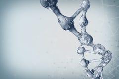 Illustration 3d des DNA-Molekülmodells vom Wasser Lizenzfreie Stockbilder