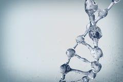 Illustration 3d des DNA-Molekülmodells vom Wasser Stockbild