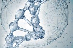 Illustration 3d des DNA-Molekülmodells vom Wasser Stockfoto