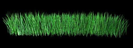 Illustration 3d des grünen Grases lokalisiert auf schwarzem Hintergrund Lizenzfreies Stockbild