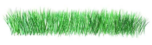 Illustration 3d des grünen Grases lokalisiert auf weißem Hintergrund Stockfotografie
