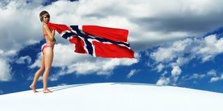 illustration 3d du drapeau illustration de vecteur