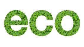 Illustration d'Eco Image stock