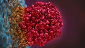 Illustration 3d eines Rotes färbte Hirntumorzelle Stockfotos