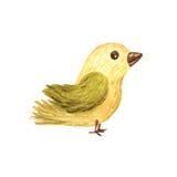 Illustration d'enfants d'oiseau de forêt d'aquarelle Images stock
