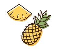 Illustration d'ensemble d'ananas avec l'effet d'aquarelle Illustration tirée par la main de croquis de griffonnage de vecteur Photos stock
