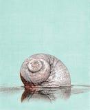 Illustration d'escargot de lune Images stock