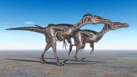 Velociraptor Photo libre de droits