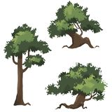 Illustration 2D game trees / иллюстрации деревья для игр. 2d game tree with a lot of green leaves without background Stock Image