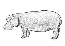 Illustration d'hippopotame, dessin, gravure, encre, schéma, vecteur illustration de vecteur