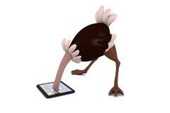 illustration 3D studier för en ostrich en tabletPC Royaltyfri Bild