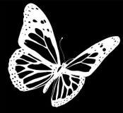 Illustration d'un beau papillon color? qui vole illustration de vecteur