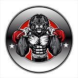 Illustration d'un bodybuilder de lion Image libre de droits