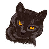 Illustration d'un chat pets illustration de vecteur