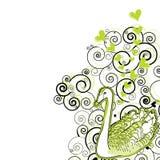Illustration d'un cygne Photographie stock libre de droits
