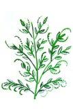 Illustration d'une branche Illustration Libre de Droits