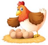 Une poule et ses sept oeufs Photos libres de droits