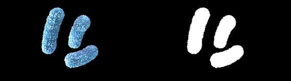 Illustration 3d von ein Bakterien Burkholderia Cepacia vektor abbildung