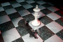 Illustration 3d: Zwei Schachzahlen auf dem Spielfeld Weißer König ist ein Sieger und Lügen eines Verliererschwarzen werfen sich a Lizenzfreie Stockbilder