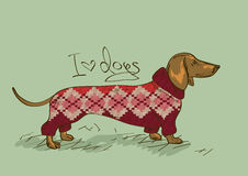 Illustration with Dachshund dog Royalty Free Stock Photos
