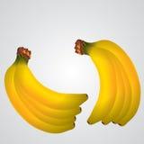 Illustration de banane Photo libre de droits