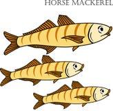 Illustration de bande dessinée de couleur de poissons de saurels Photographie stock