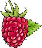 Illustration de bande dessinée de fruit de framboise Photographie stock libre de droits
