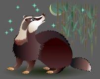 Illustration de blaireau regardant la lune Photo libre de droits