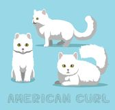 Illustration de Cat American Curl Cartoon Vector Images libres de droits