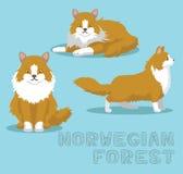 Illustration de Cat Norwegian Forest Cartoon Vector illustration stock