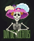 Illustration de Catrina Images stock