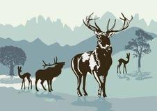 Illustration de cerfs communs dans la forêt Images libres de droits