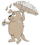 Illustration de chien tenant le parapluie Images stock